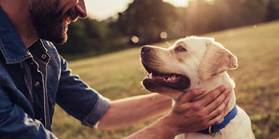 Image of a labrador retriever with a man in his 40s petting him.