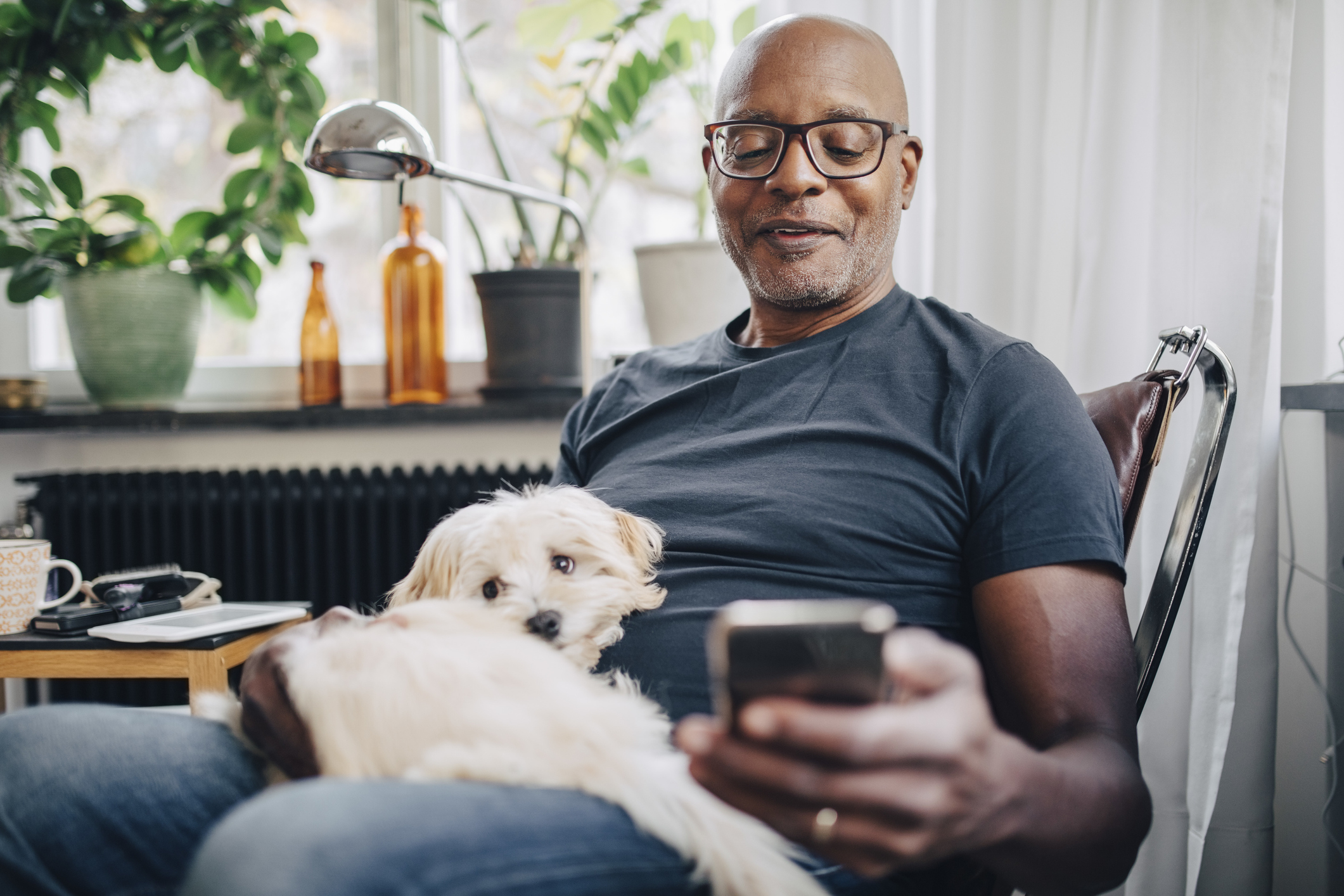 A senior adult African American male browsing his retirement savings on his smartphone while a white dog sits in his lap.